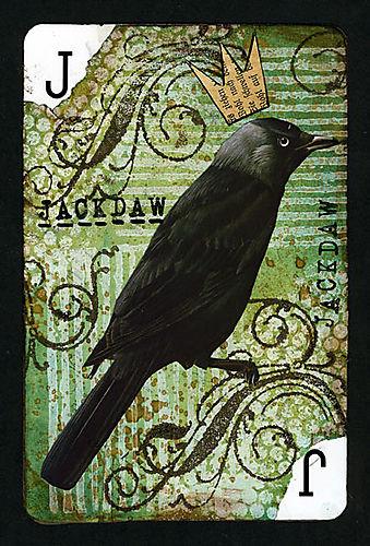 Ws-playingcard