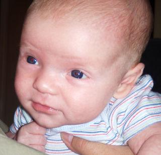 Bobby at 6 weeks