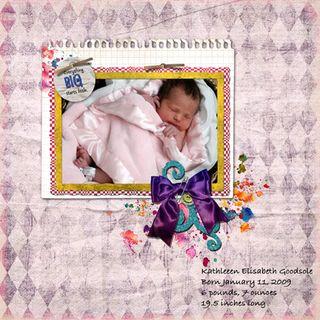 Newborn-basket