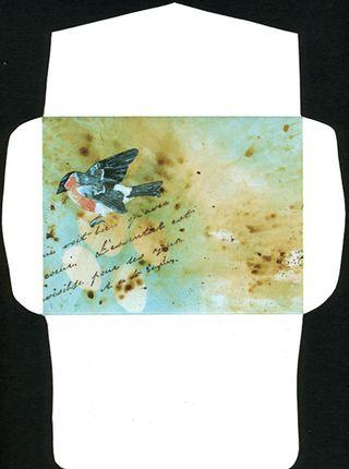 Bullfinch-env004