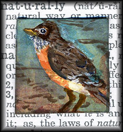 Winged-robin